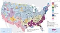 La composizione dell'immigrazione negli USA